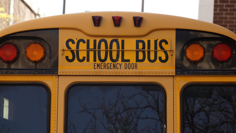 Drum Bus